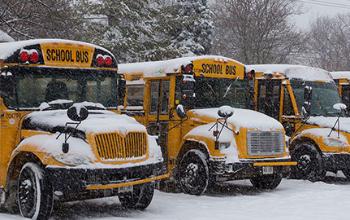 Snowy Buses