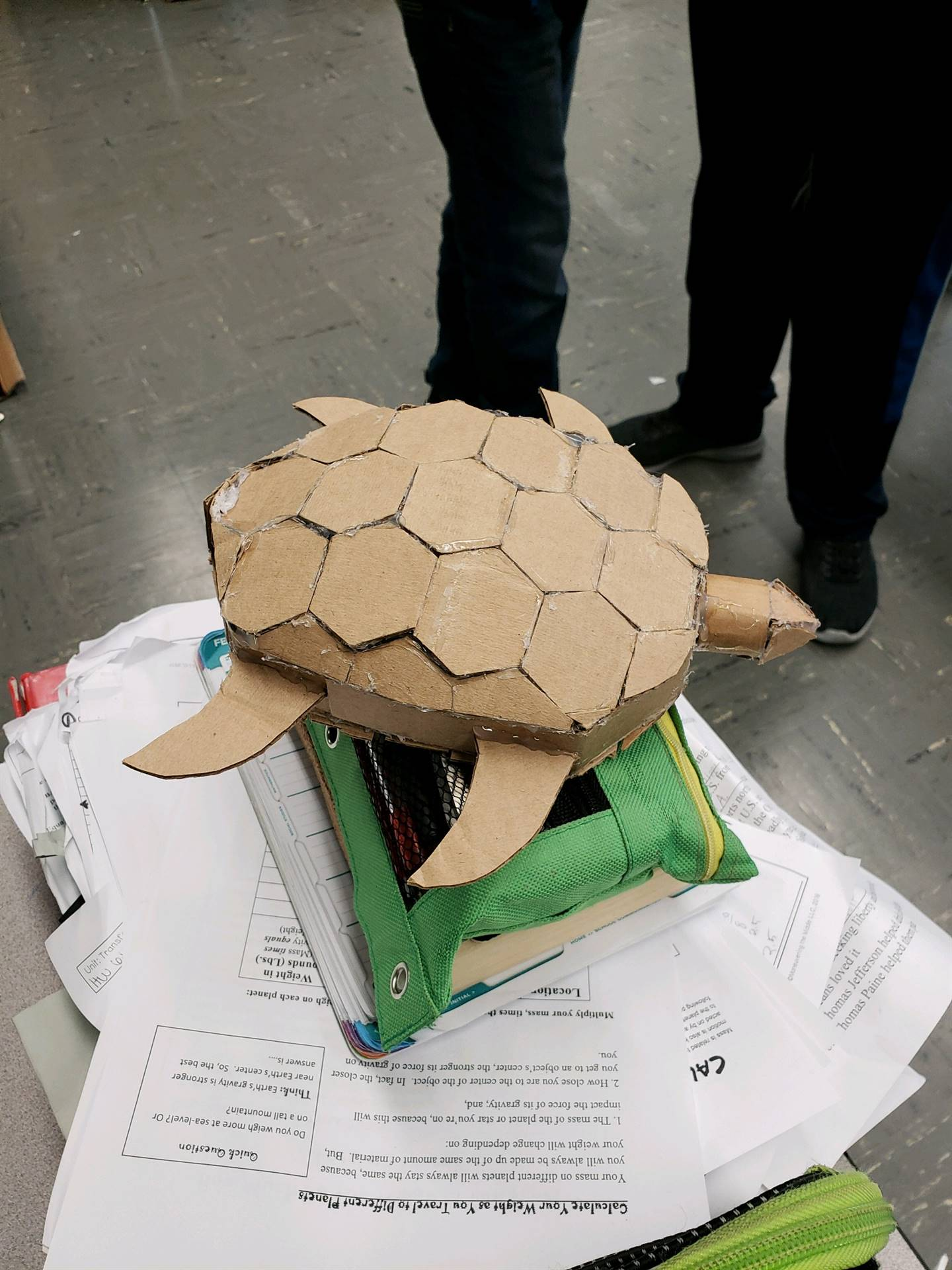 Cardboard Turtle